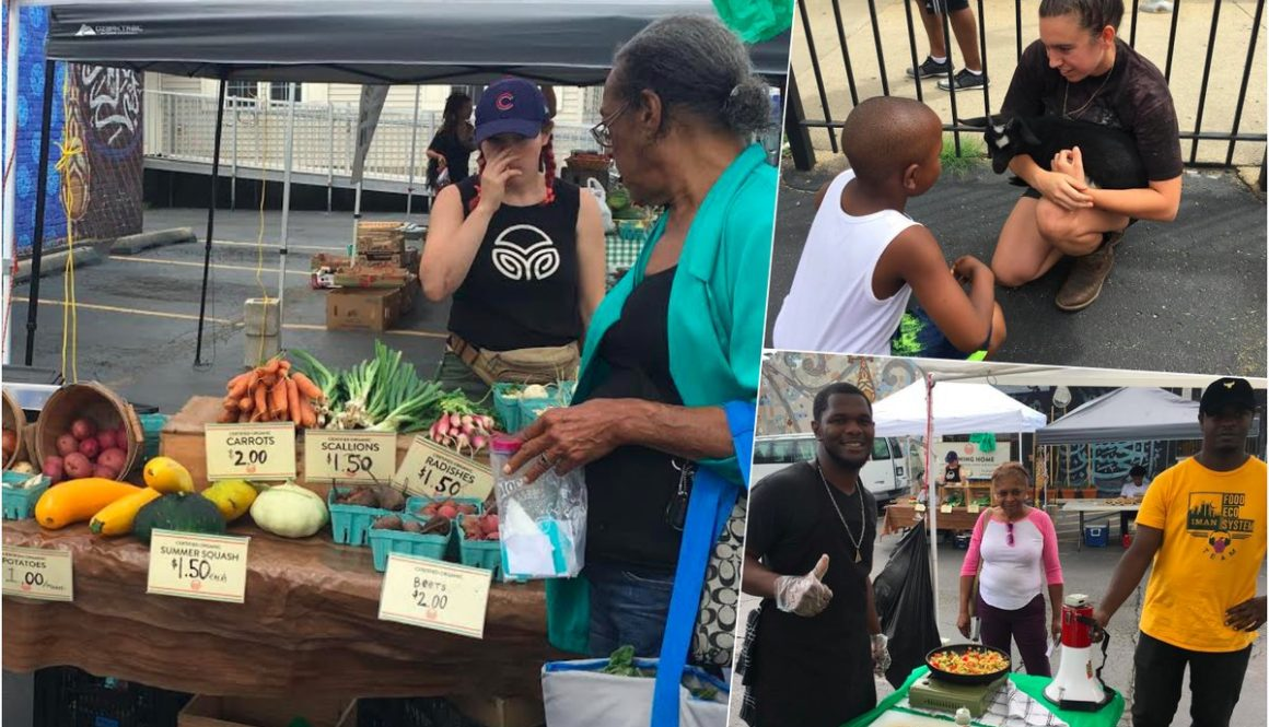 Organizers Focus on Local 'Food Ecosystem'